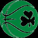 Basketball Ireland logo icon