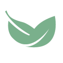Bay Leaf Digital logo icon