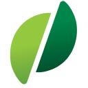 Bazile logo icon