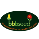 BBBseed.com logo
