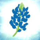 Bluebonnet Trails Community Services logo icon