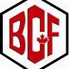 BC FASTENERS & TOOLS LTD logo