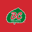 Bc Tree Fruits logo icon