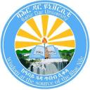 Bahir Dar University logo icon