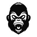Read Beast Gear Reviews