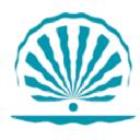 Созвездие красоты logo icon