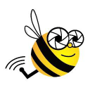 Bee Aerial logo icon