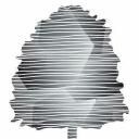 Beechwood Advisors LLC logo