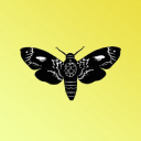 Beermoth logo icon