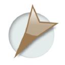 Beezix logo icon