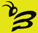 Beezy Web Solutions logo