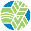 bellinstitute.com logo