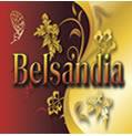 Belsandia.com logo