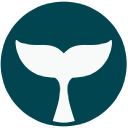 Beluga Pay logo icon