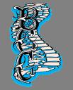 Belvidere Chiropractic Center logo