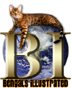 Bengals Illustrated logo icon