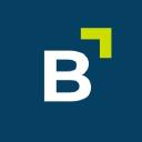 Bergfürst logo icon