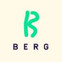 Berg logo icon