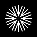 Berg Insight logo icon