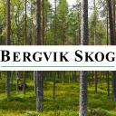 Bergvik Skog logo icon
