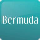 Bermuda logo icon