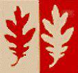 Bernards Township Company Logo