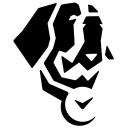 Bernard Watch logo icon
