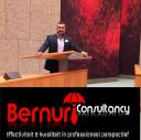 Bernur Consultancy logo