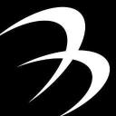 Besa Lighting Co logo