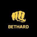 Bethard N.V logo