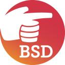 Beth Singer Design, LLC logo