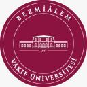 Bezmi Alem University logo