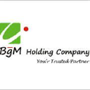 BgM HOLDING COMPANY logo
