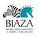 Biaza logo icon