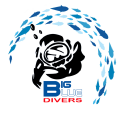 Big Blue Divers Rome logo