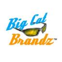 Big Cat Brandz logo icon
