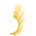 Big Cob Hybrids logo