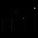 Big Fish Marketing & Advertising logo