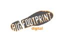 Big Footprint Digital logo icon