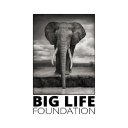 Big Life Foundation logo