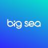 Big Sea Design logo