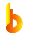 Big Systems, LLC logo