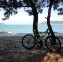Bikes Or Bicycles logo icon