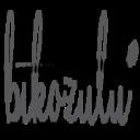 Bikozulu logo icon