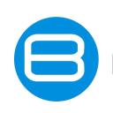 Bilgis logo