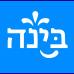 Bina Center for Jewish Identity & Hebrew Culture logo