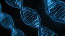 Biocogito are using ProsperWorks
