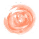 BioCosmetic dis S.L. logo