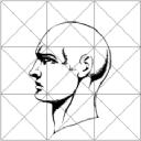 Biodynamics SA logo