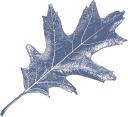 Biohabitats logo